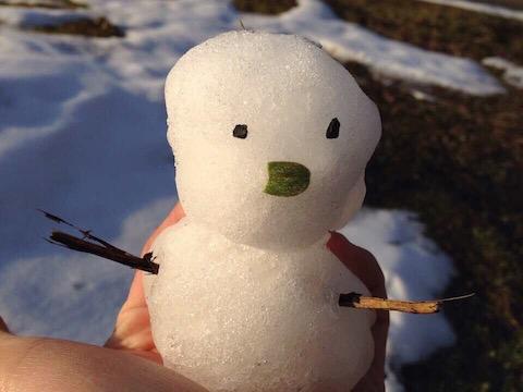 20150222a_snowman