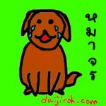 คุณทราบไหมครับ? ทำไมที่ญี่ปุ่นไม่มีหมาจรจัด…
