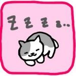 ได: แมวนอนได้ทุกที่? จริงด้วย^^ รูปแมวนอนอยู่14รูป