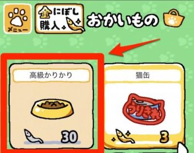 20150907a_food