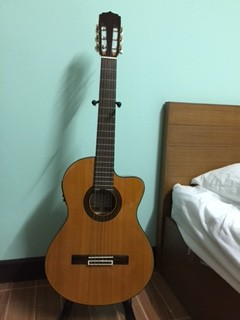 20160103a_guitar