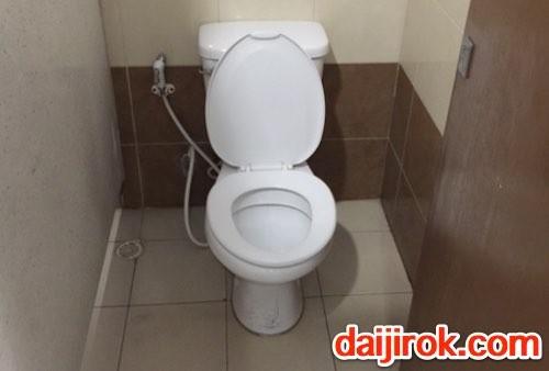 20160325a_toilet